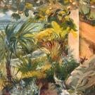 bahama_garden